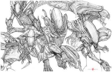 Xenomorph by ChrisOzFulton