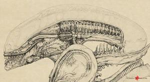 Xenomorph Alien Big Chap by ChrisOzFulton