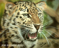 Jaguar by Kim1486