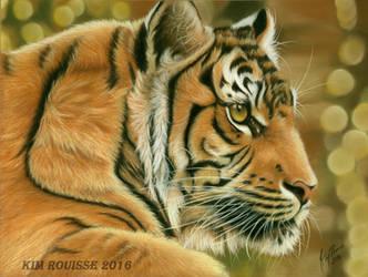 Tiger by Kim1486