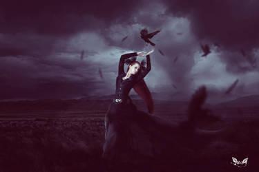 Crow by DieBrautDesWolfes