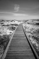 Pathway by HighPassPhotography