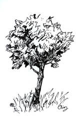 tree by Altrial