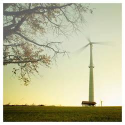 Wind... by jendrynDV