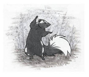 skunk by luve