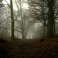 Fog by DerPavlo