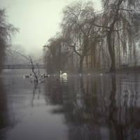 Fog3 by DerPavlo