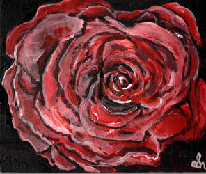 Callys Rose by Vryka