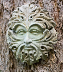 Garden Face I by IQuitCountingStock