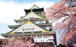 Osaka Jyou with Sakura by heeeeman