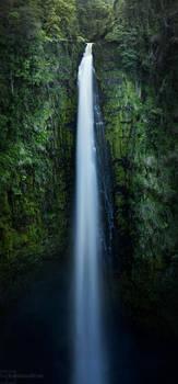 Akaka Falls by heeeeman