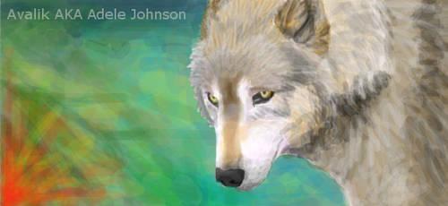 Grey Wolf I by Avalik