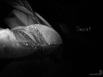 Sweat by luneves