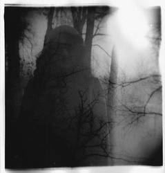 holga by julieannejones