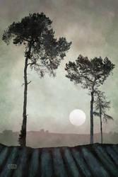 Three Trees by Smoozles