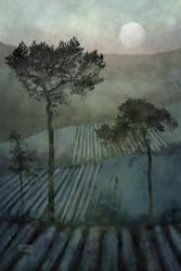 Three Trees 2 by Smoozles