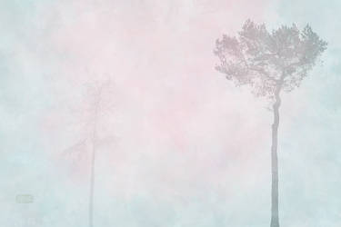 Three Trees 3 - Fog by Smoozles