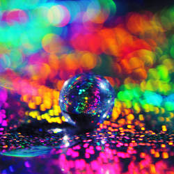 Disco by Kameolynn