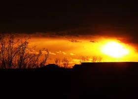 Sunset Shrub by FxSanyi