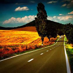 Road Trip by sican