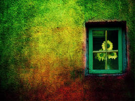 the window of a rainbow colour by ioana-boroda