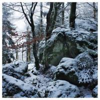 Rocks, snow, frozen trees.. by FlorentCourty
