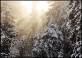 Light Above the Mist by FlorentCourty