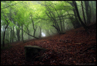 Mystic by FlorentCourty