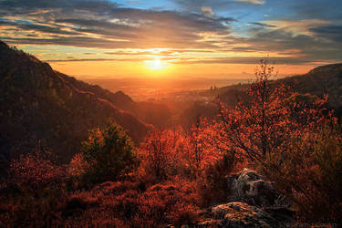 Everlasting Autumn by FlorentCourty