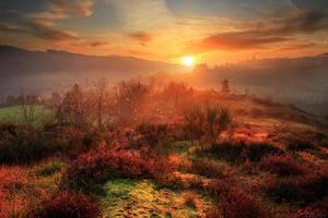 Fantasy Realm by FlorentCourty