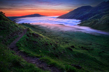 Wilderness' Magic by FlorentCourty