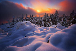 Wavy Shapes by FlorentCourty