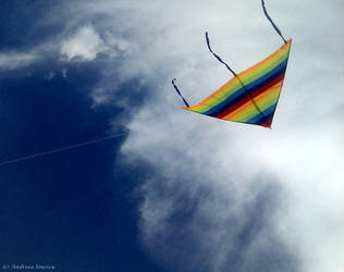 Zmeul 'the kite' by Antipatieee