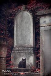 The gravekeeper by Robgrafix