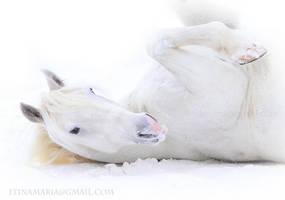 Enjoying snow by mari-mi
