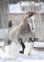in snow by mari-mi