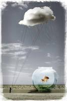 The raincatcher by Wholovesduck
