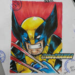 SDCC2016 - Wolverine by theCHAMBA