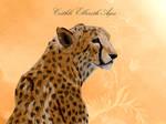 Ceithli Elbereth Ages - OC by sebyZart