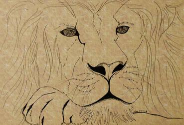 #2 Lion by sebyZart