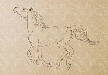 #3 Horse by sebyZart