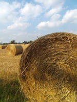 Hay Bales by buttercupminiatures