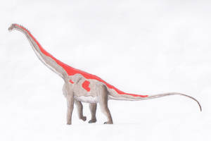 No not all my sauropods are grey. by PaleoJoe