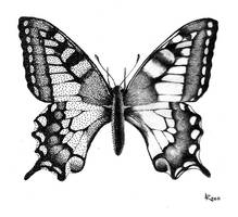 Papilio machaon by Taiyo85