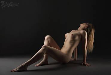 Desire by LadyCarnal