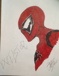 Spider-Man by Josh-Boffa