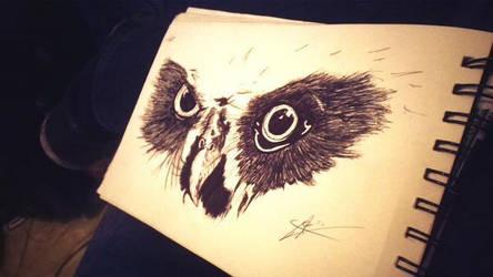 Owl by 123nukume