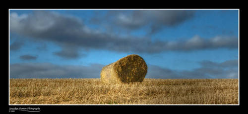 Hey Hay by Punt1971
