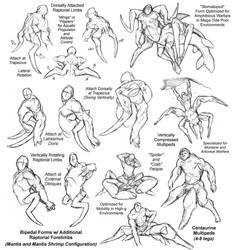 Arms Race by thomastapir
