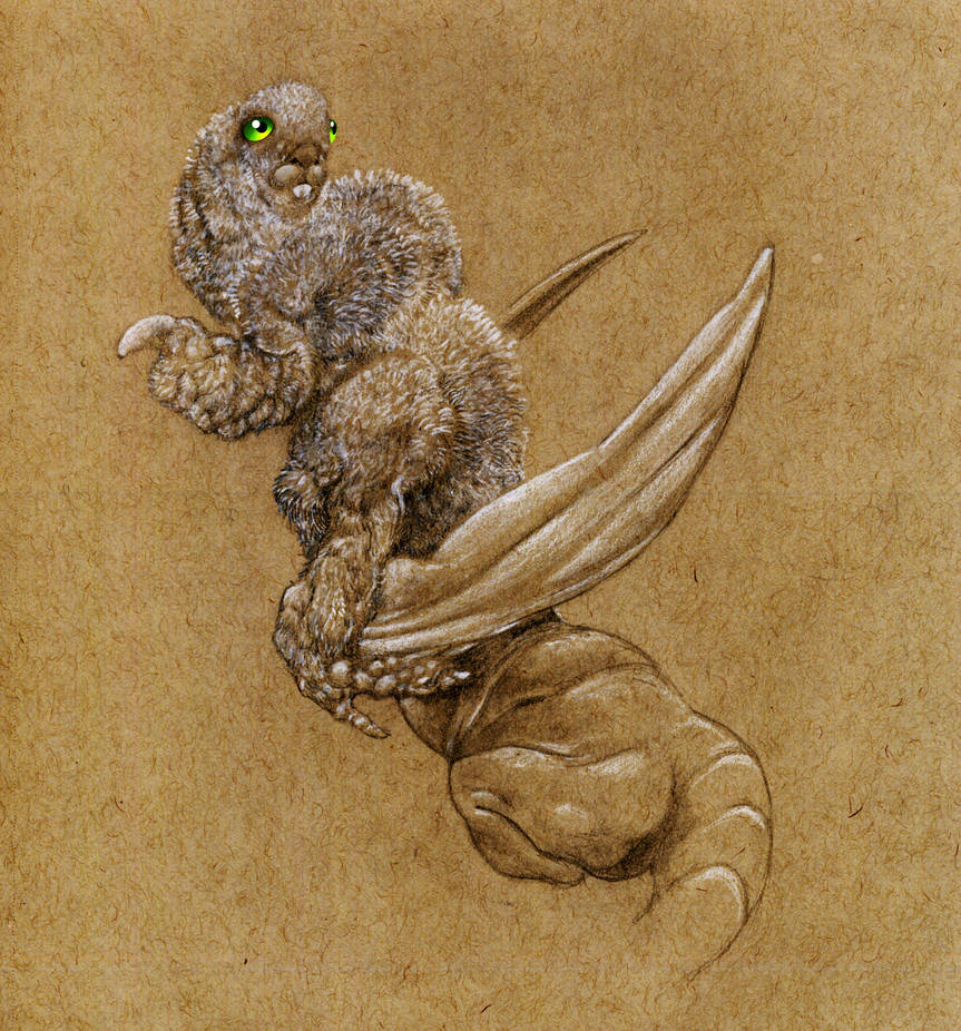 [B'sS-LT1] [En Construction] Dragon_squirrel_by_thomastapir_dcifjnq-pre